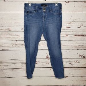 Torrid Stretch Skinny Jeans Medium Wash